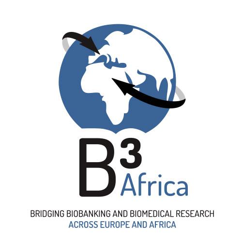 B3Africa logo