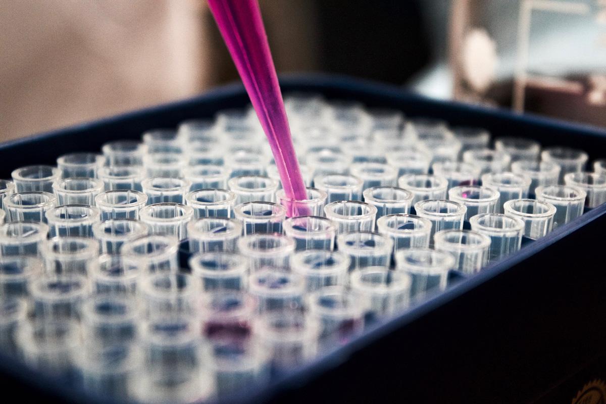 test tubes, quality management services, bbmri-eric, andrea wutte